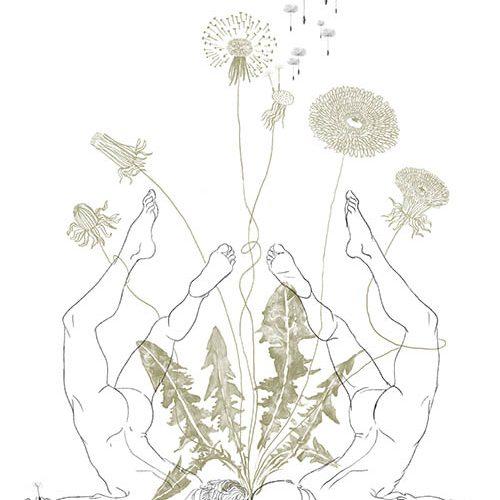 corpi che sembrano fiori